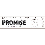 Horizon2020 PROMISE project logo